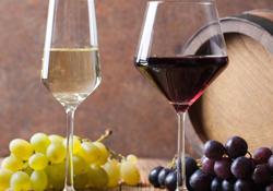 Vin och golf i Italien
